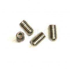 Madenschraube M4*4 AISI 316 - 4 stücke Getreide 02030101 DHM