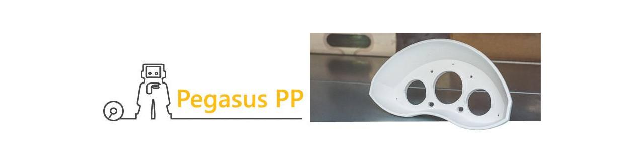 Pegasus PP