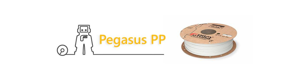 Pegasus PP Ultralight Formfutura | Compass DHM projects