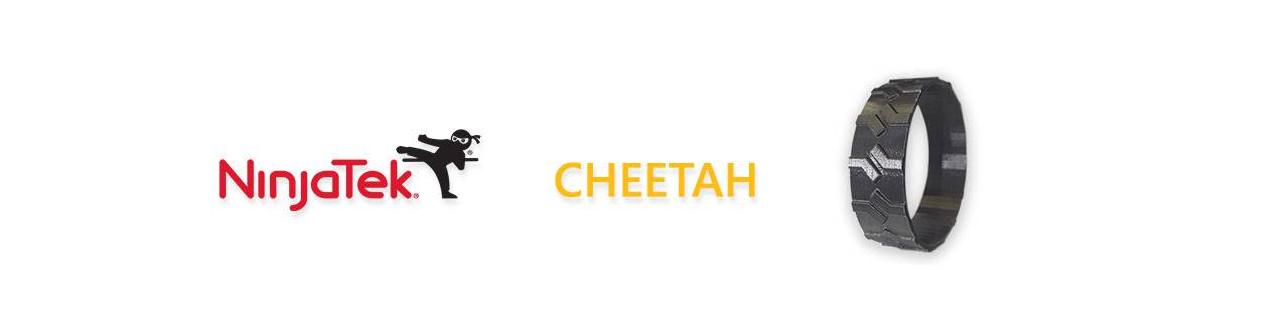 Cheetah NinjaTek | Compass DHM projects