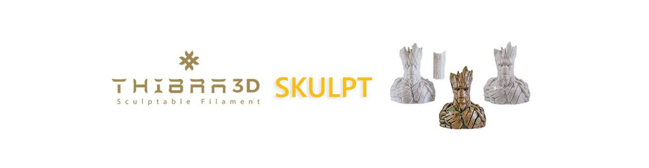 Thibra3D SKULPT | Compass DHM projects